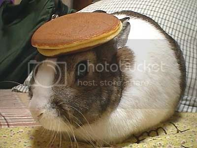 This weeks theme is NOT: bunnies, pancakes, or unusual habadashery